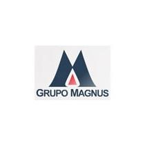 Magnus Serviços Ltda